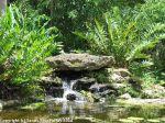 McKee_Botanical_Gardens_4_7-27-2014
