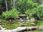McKee_Botanical_Gardens_4a_7-27-2014