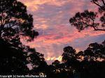 Sunrise_3_9-29-2014