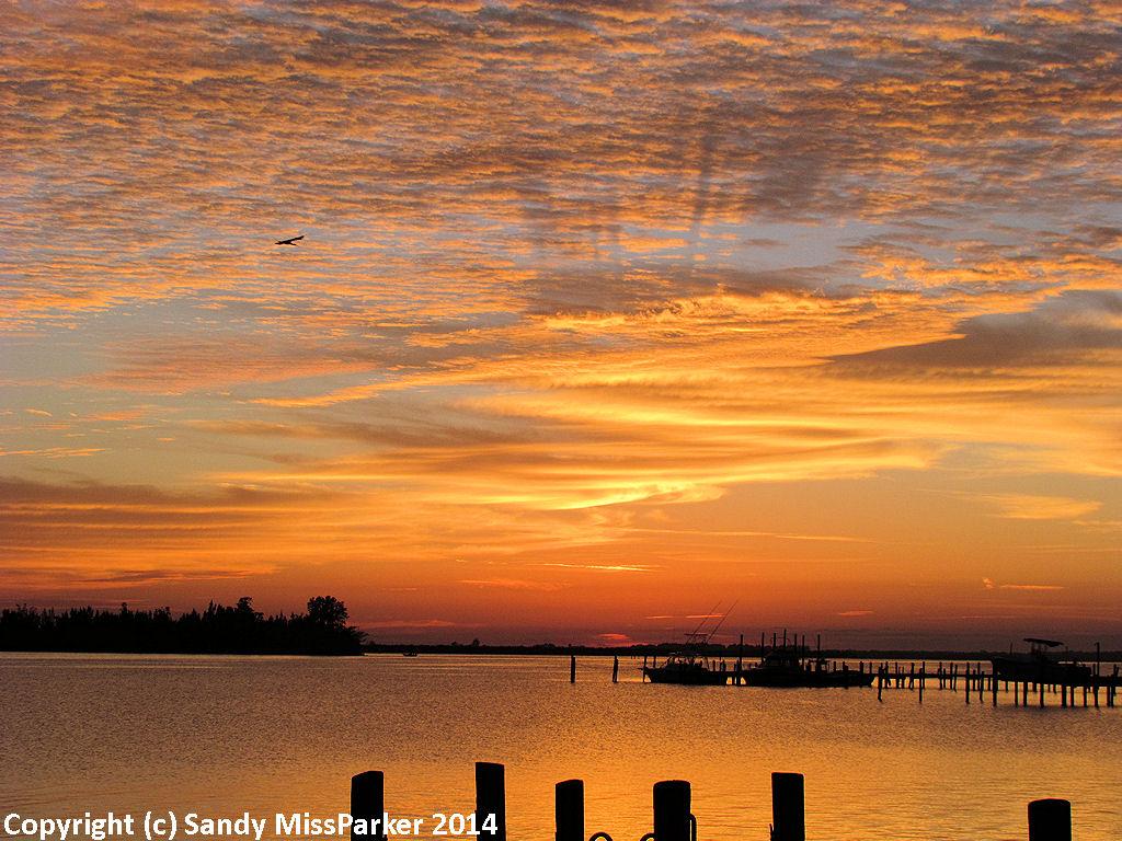 december_19_2014-sunrise_5